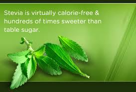 Etiquetado de Alimentos. La Stevia - Etiquetado de alimentos - EV Consultoría y Calidad Alimentaria