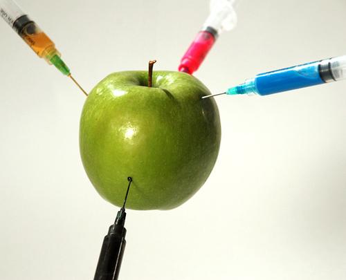 Seguridad alimentaria, Organismos Modificados Genéticamente (OMG) y Alimentos Transgénicos